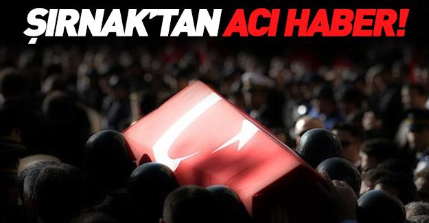Şırnak'tan acı haber! Cudi Dağı bölgesinde bombalı saldırı!
