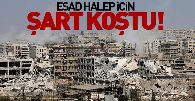 Esad Halep için şart koştu!