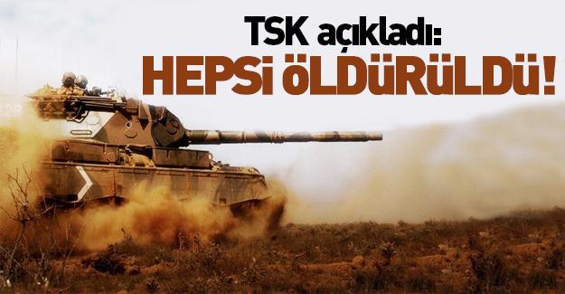 TSK'dan flaş açıklama: Hepsi öldürüldü!