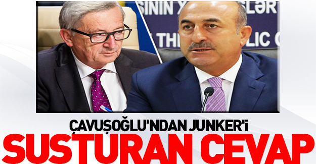 Çavuşoğlu'ndan Junker'i susturan cevap