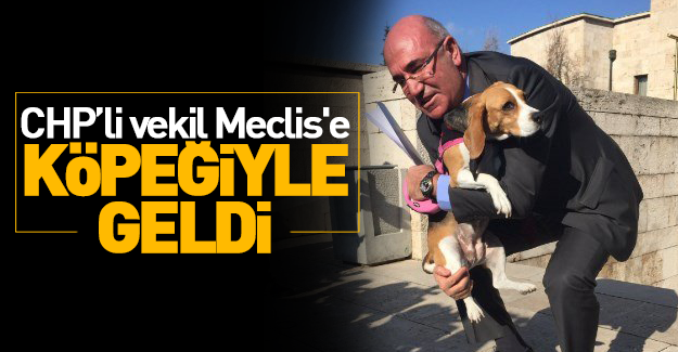 CHP'li vekil Meclis'e köpek getirdi