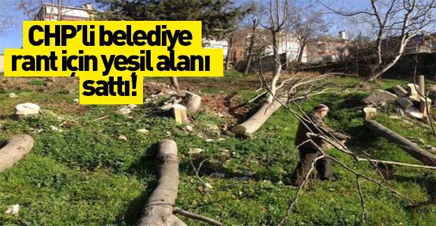 CHP'li belediye AVM için yeşil alanı sattı!