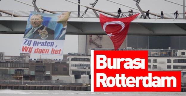 Hollanda'da referandum kutlaması