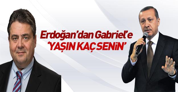 Cumhurbaşkanı'ndan Sigmar Gabriel'e: Haddini bil