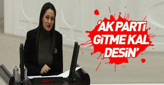 CHP'den diğer partilere: Pavey için 'hayır' çağrısı
