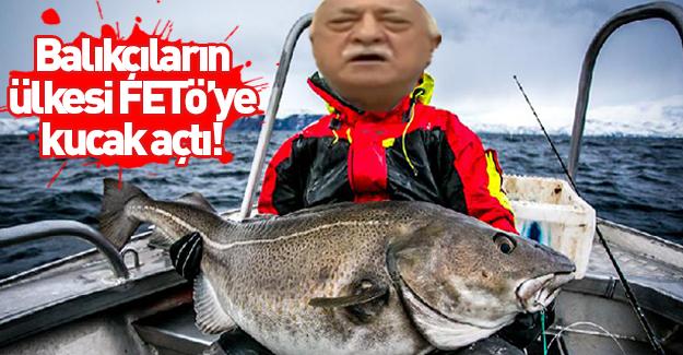 Balıkçıların ülkesi FETÖ'ye kucak açtı!