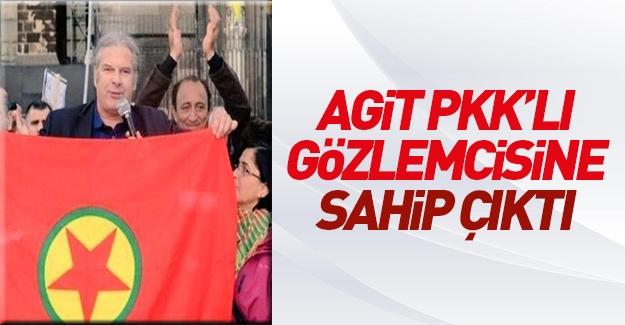 AGİT Gözlem Heyeti Başkanı PKK'lı gözlemcisini savundu