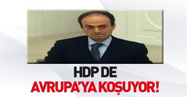 HDP de Avrupa'ya koşuyor!