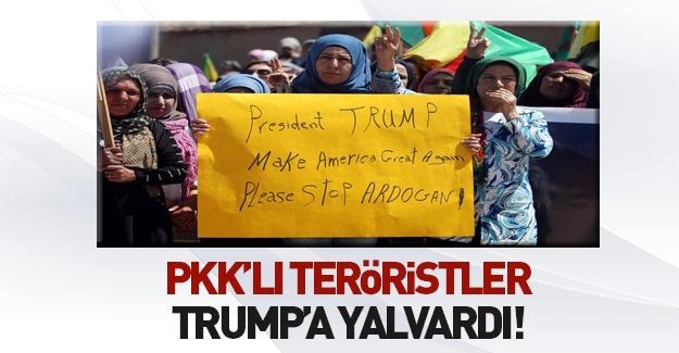 PKK'lılar Trump'a yalvardı