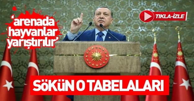 Erdoğan: Bütün bu tabelaları sökün!