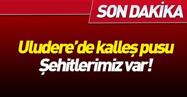 Şırnak'ta şehitlerimiz var!