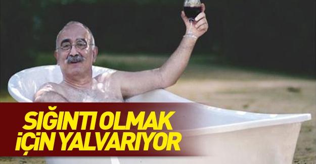 Firari Sevan Nişanyan sığıntı olmak için yalvarıyor!
