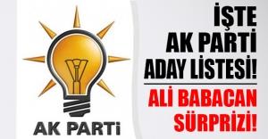 İşte AK Parti'nin YSK sunduğu aday listesi! Flaş Ali Babacan gelişmesi...