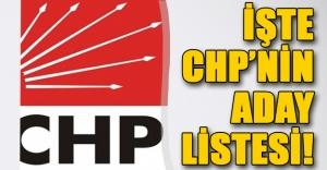 İşte CHP'nin YSK'ya sunduğu aday listesi! 1 Kasım seçimi öncesinde flaş isimler...