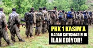 PKK çatışmasızlık ilan ediyor