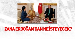 Leyla Zana Erdoğan'dan ne isteyecek?