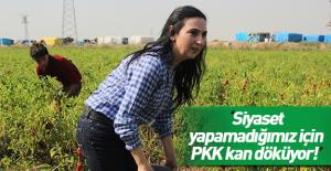 Figen Yüksekdağ: Türkiye'yi bölüyorlar