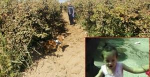 Irmak Kupal cinayetinde yeni gelişme