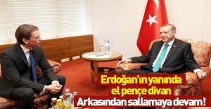 Avusturyalı bakanın Recep Tayyip Erdoğan hazımsızlığı