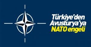 Türkiye#039;den Avusturya#039;ya...