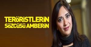 Amberin PKK'yı yere göğe sığdıramadı!