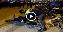 Hollanda polisi Türk'ü köpeğe ısırttı, Erhan Çelik'e saldırdı...