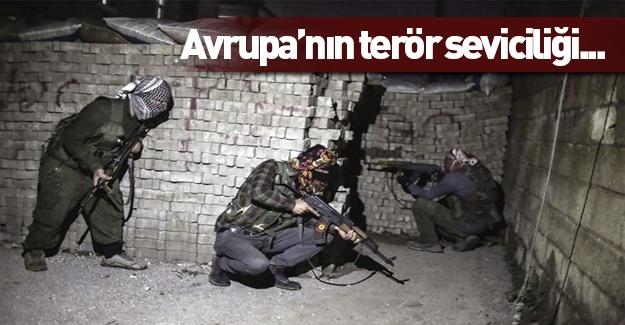 Avrupa'nın terör sevgisi