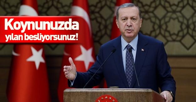Cumhurbaşkanı Erdoğan: Koynunuzda yılan besliyorsunuz