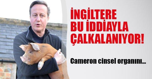 İngiltere bu iddiayla çalkalanıyor! Cameron cinsel organını...