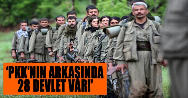 Cemil Çiçek'ten flaş ifadeler! PKK'nın arkasında 28 devlet var