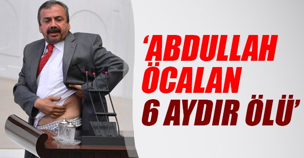 Sırrı Süreyya Önder: Öcalan 6 aydır ölü