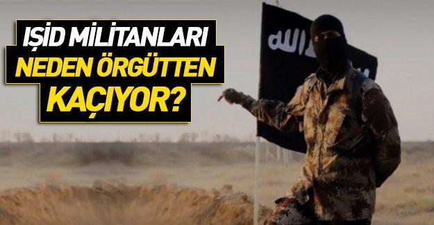 IŞİD'den kaçanlar konuştu