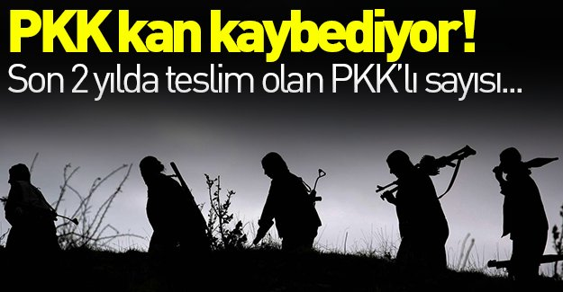 PKK kan kaybetmeye devam ediyor! 8 PKK'lı daha teslim oldu!