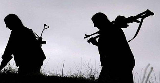 Şırnak Valiliği açıkladı: 7 PKK'lı terörist teslim oldu!