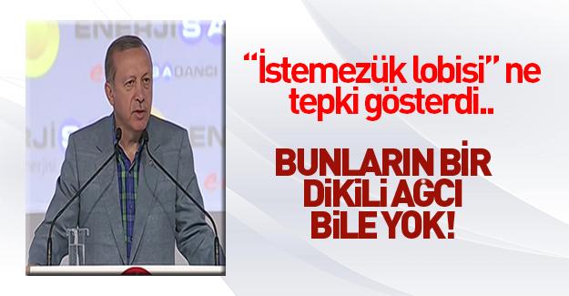 Erdoğan: Projelerin karşısına dikilenler teferruattır