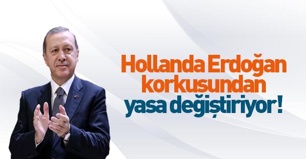 Hollanda Erdoğan için yasa değiştiriyor!