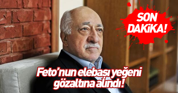 Teröristbaşı Gülen'in yeğeni gözaltına alındı