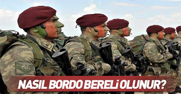 Bordo Bereliler' hakkında her şey!
