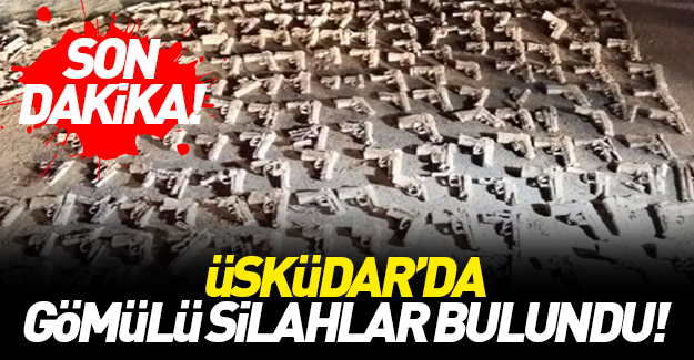 Üsküdar'da gömülü tabancalar bulundu