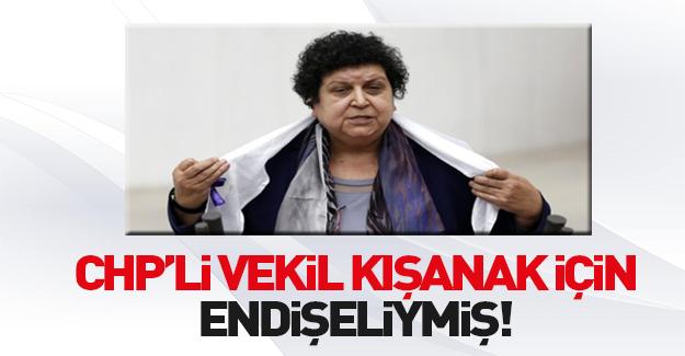 CHP'li Şenal Sarıhan'dan Diyarbakır'da yaşananlara tepki