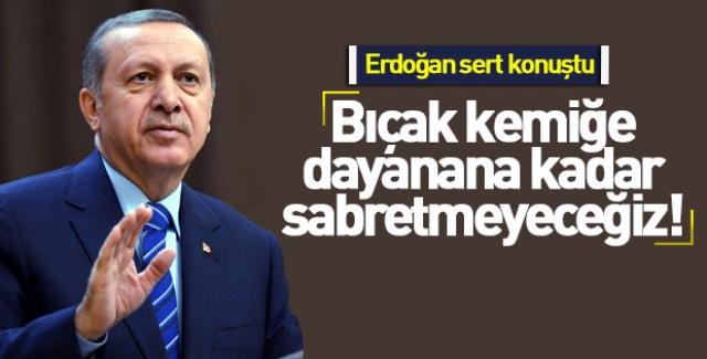 Erdoğan:Terör örgütlerinin tepelerine bineceğiz!