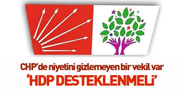 CHP'nin Demirtaş ve HDP sevgisi!