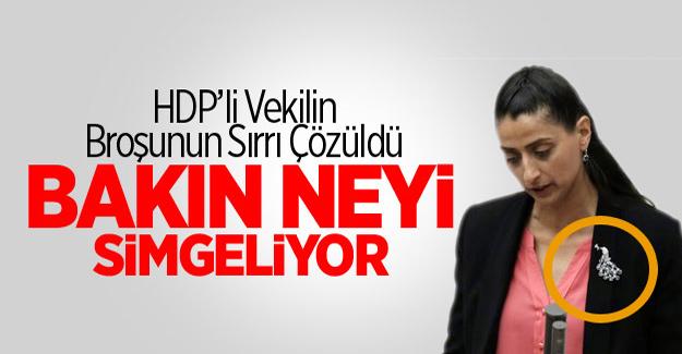 HDP'li Uca'nın Taktığı Tavus Kuşu Broşunun Sırrı