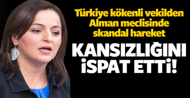 Türkiye kökenli vekilden skandal hareket!