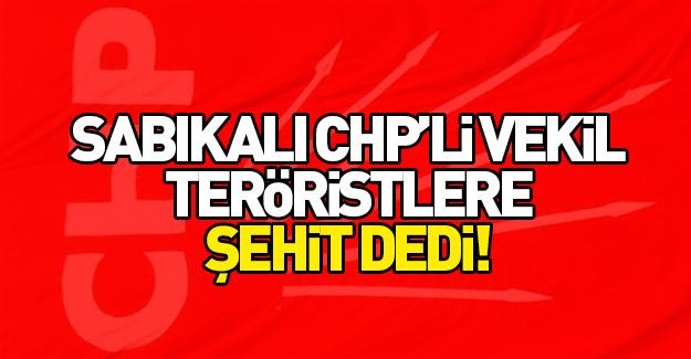 CHP'li vekil teröristleri şehit ilan etti