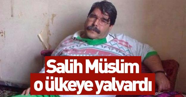 Teröristbaşı Salih Müslim o ülkeye yalvardı...