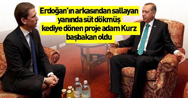 Irkçı Kurz başbakan!