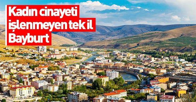 Türkiye'de işlenen kadın cinayetlerinin haritası