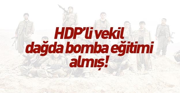 HDP'li vekil soluğu dağda aldı
