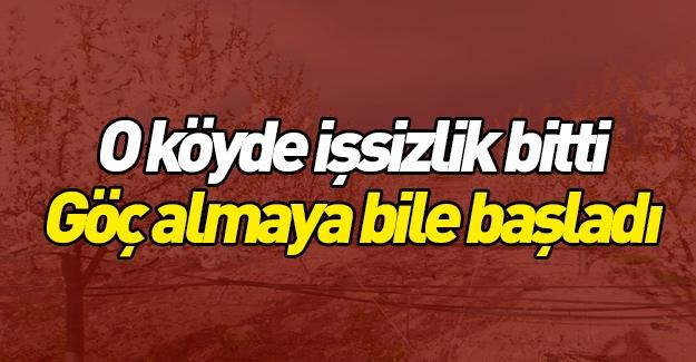 Yozgat'taki bu köy geri göç alıyor